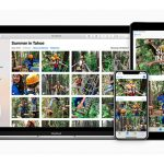 Organizar videos y fotografías con Fotos de Apple